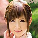 히마리 코토코